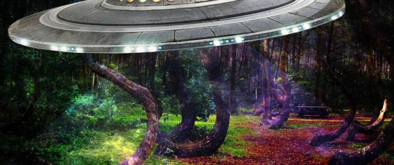 Ovnis; Florestas atormentadas pelo fenômeno