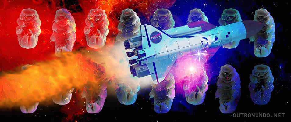 Cientista-chefe da NASA prevê descoberta de vida alienígena até 2025